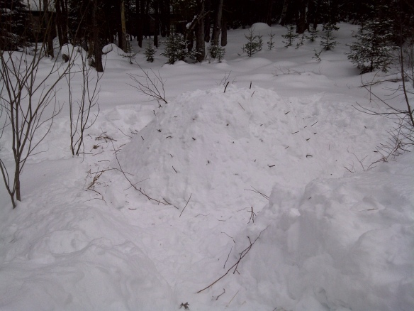 Sticks inserted into the pile of snow