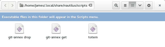 nautilus is pretty smart and lets you know that this folder is special